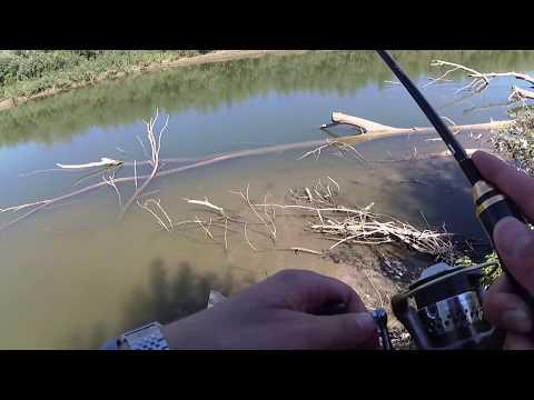 рыбалка в молдове река прут