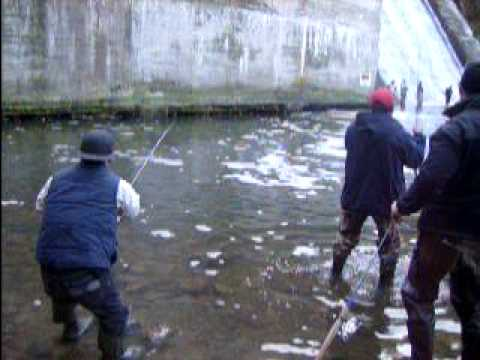 Burt dam salmon fishing youtube for Fishing license for disabled person