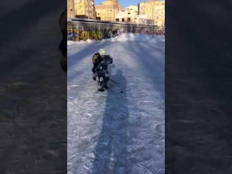 Хоккей 2017