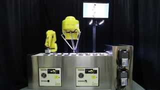 Two Ultra Fast Robots Pick & Place Batteries to Form Group Patterns - FANUC America