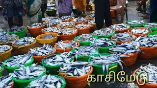 INDIA'S BIGGEST FISH MARKET|KASIMEDU FISHING HARBOUR