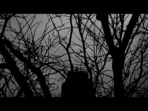 Doves - Fridays Dust