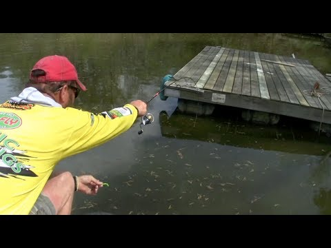 Amazing dock shooting technique for Crappie!