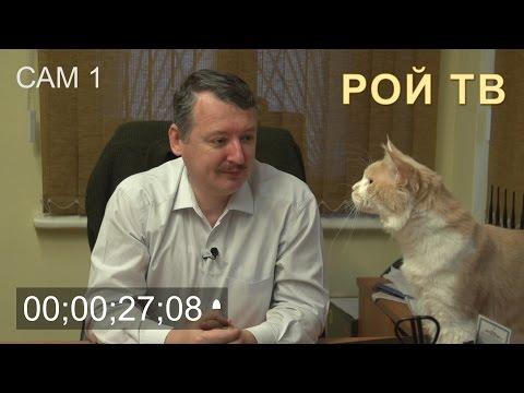 Прикол! Кот помешал интервью Игоря Стрелкова