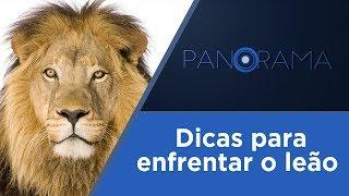 Panorama | Imposto de Renda 2019 | 19/03/2019
