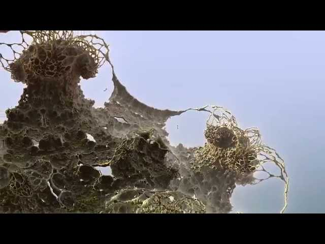 Mandelbulb 3D Little Big World Flythrough