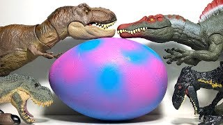 Hatch Lots of Dinosaur Eggs Toys with Jurassic World Dinosaur Toys Fun Video for Kids!