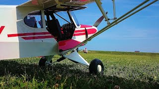 ToyStory  with  Eflite Super Cub 25e