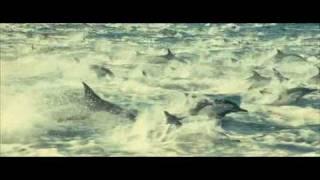 Oceans (2009) - Official Trailer