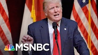 Donald Trump Foreign Policy Antics Raise Question, Stupid Or Nefarious? | Rachel Maddow | MSNBC