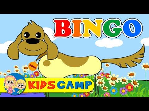 BINGO Song with Lyrics - Nursery Rhymes