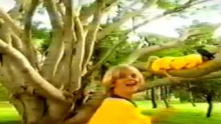 Watch Aaron Carter Children Of The World video