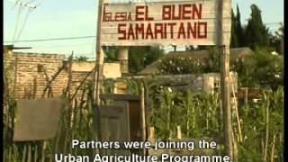 Programa de Agricultura  (PAU) Urbana de la ciudad de Rosario