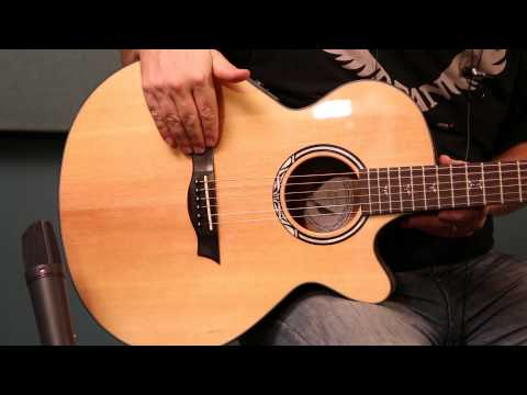 Dean Acoustic Product Demo! The Dean Performer Plus Acoustic Guitar!