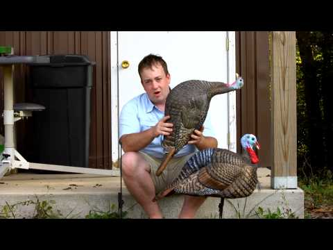 Snood Turkey Decoys from Hunter's Specialties