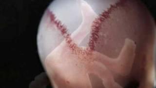 Watch Cerys Matthews Weightless Again video