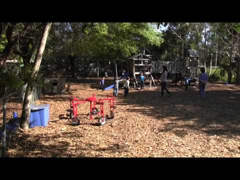 Country Day For Children Outdoor Environment