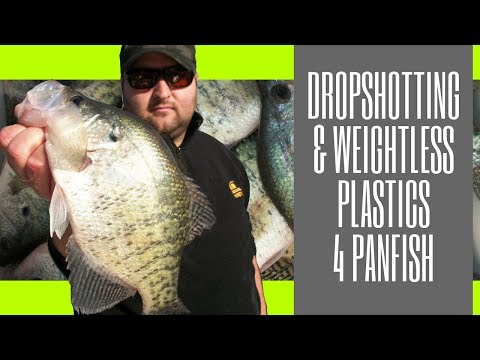 Dropshot Panfish/Weightless Plastics for fall Crappie
