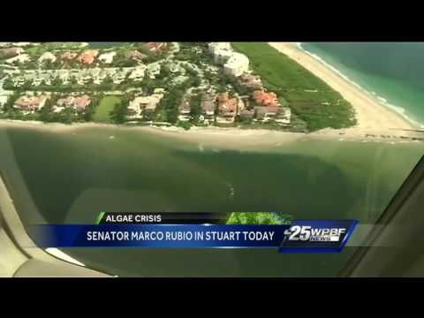 Senator Marco Rubio in Stuart Today