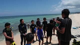 小学生が米原海岸でシュノーケリング