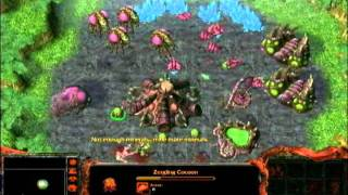 Warcraft vs Starcraft - Pure Melee; Orc Attack.wmv