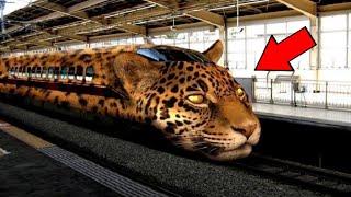 दुनिया की सबसे तेज़ चलने वाली ट्रेन।  the world's fastest train