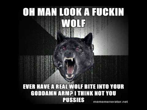 Eight Minutes of Insanity Wolf