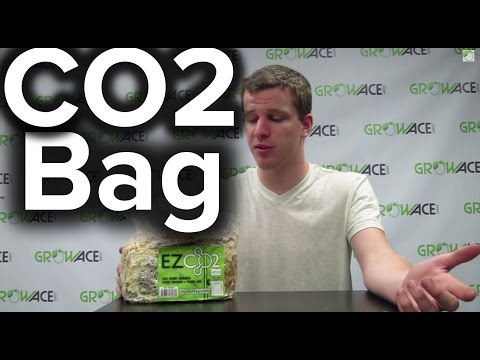 GrowAce.com - How to use EZ CO2 Bags for Indoor Grow Rooms or Grow Tents