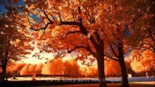 download musica When I Fall In Love Nat King Cole - Tradução