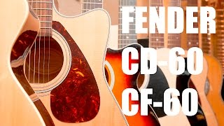FENDER CD 60 vs CF 60 : Давид против Голиафа