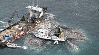 Unbelievable The Most Advance Fishing Vessel