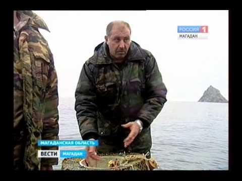 рыбалка на калыме i