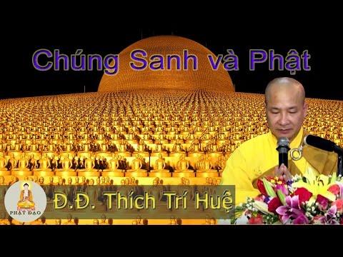 Chúng Sanh Và Phật