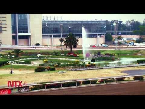 Hipódromo de las Américas, 52 hectáreas de adrenalina