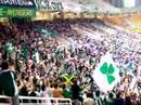 Panathinaikos Fans Horto Magiko