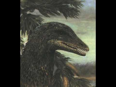 Archaeopteryx Tribute Video