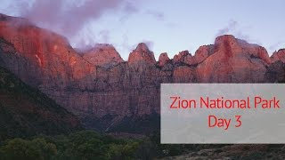 Large Format Landscape Photography in Zion National Park: Day 3