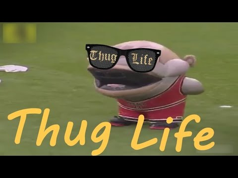 THUG LIFE - THE BEST THUG LIFE COMPILATIONS 2016 #1