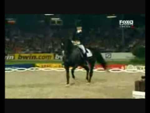Horses - Fuck You - Dedicated To Oxohorseymadoxo video