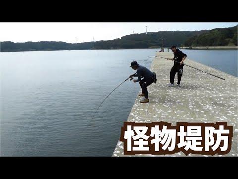 堤防 釣りスギ四平