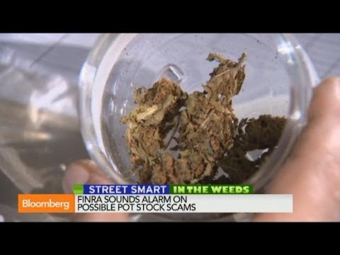 How to Spot Potential Marijuana Stock Scams