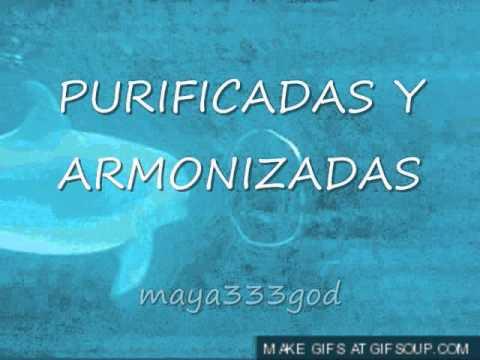 MEDITACION, SANACION CON DELFINES  Original maya333god
