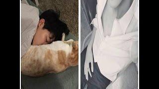 BTS Jimin 2017 Khi bạn cuồng Mochi và mê mệt Jimin :))