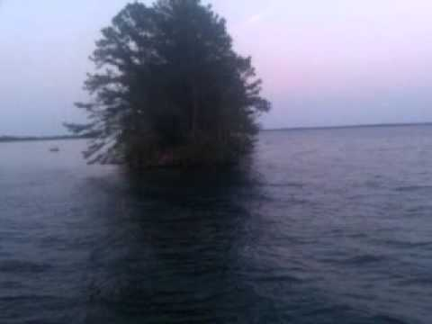 New fishing spot lake moultrie youtube for Lake moultrie fishing report