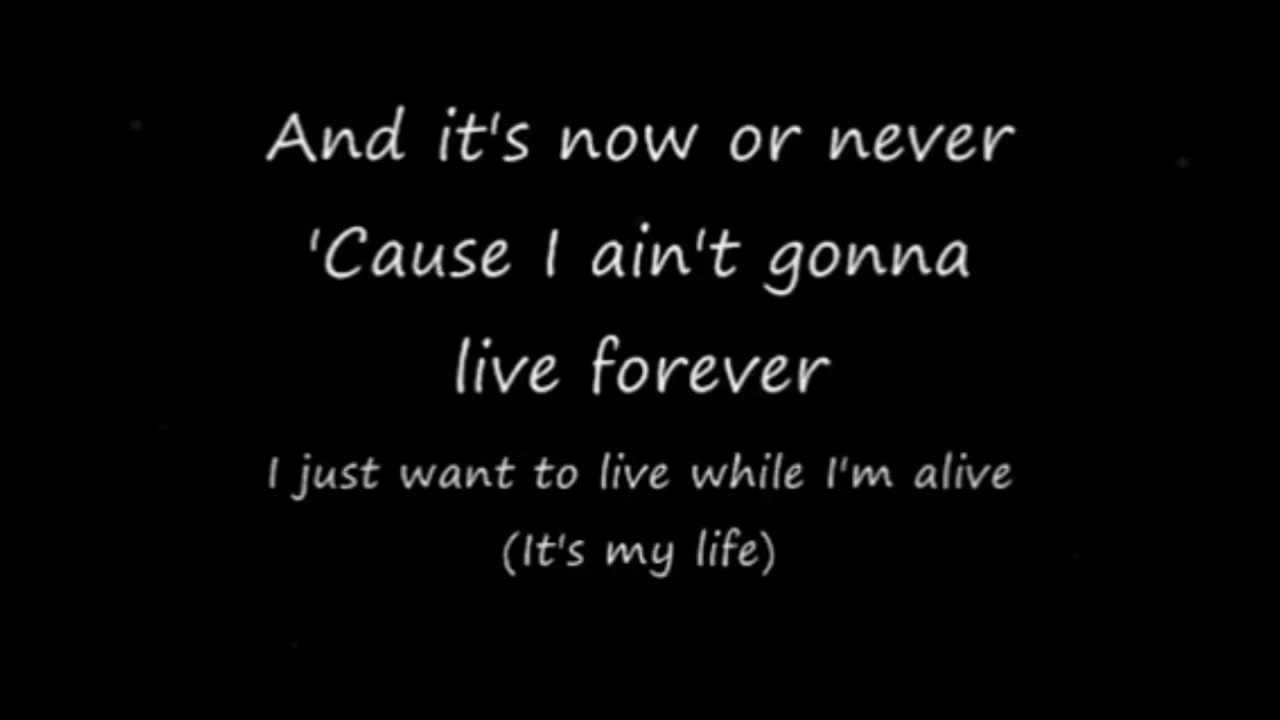Bon Jovi It 39 S My Life Lyrics Hd Youtube