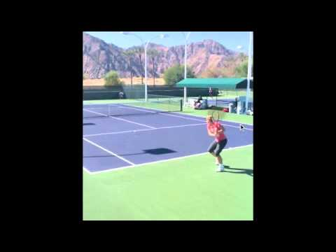 Tennis 2 handed backhand  sabine lisicki