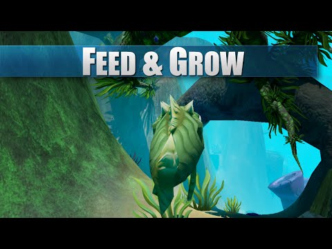 Feed and Grow: Fish - Gameplay Review