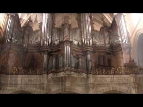 Hymne de l'ananas – Les moines de la quenelle
