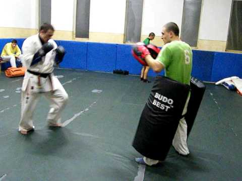 kyokushin training---punches & kick Image 1