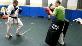 kyokushin training---punches & kick